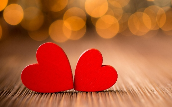 「愛情」の画像検索結果